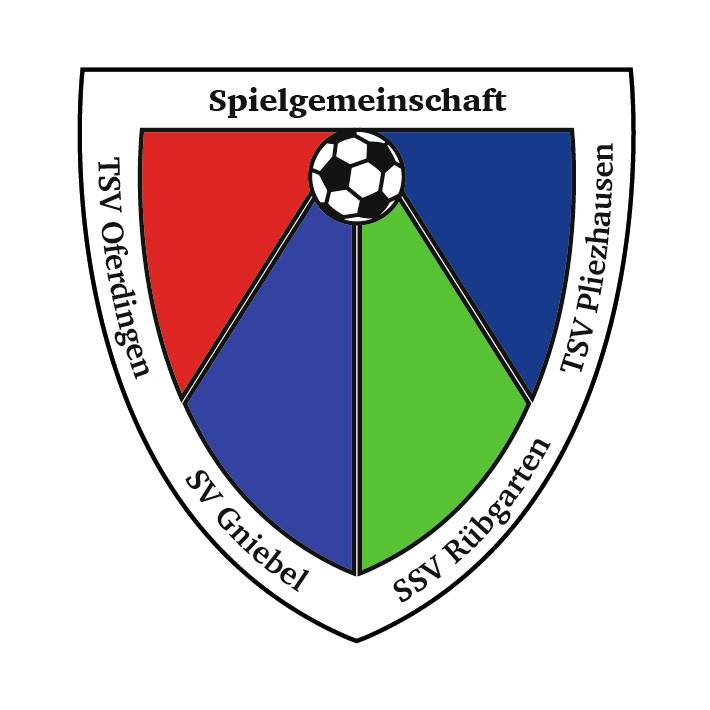 sgm-pliezhausen – jugendfussball in pliezhausen